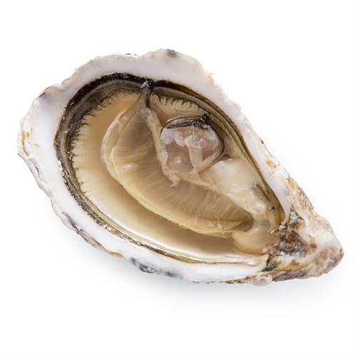 法国吉拉多生蚝(N1)24粒105-145g/粒