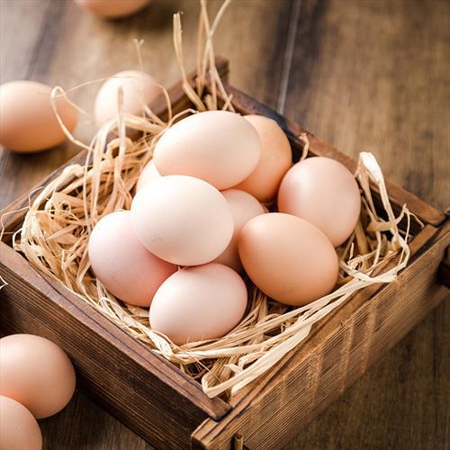 御康散养有机土鸡蛋6枚装