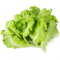 有机绿生菜220g