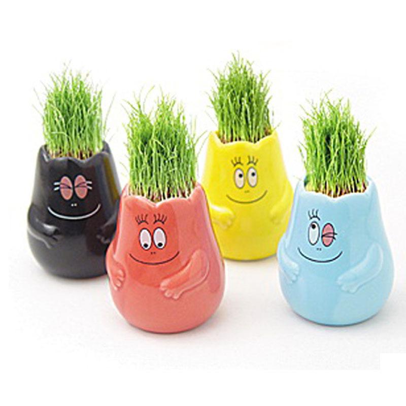 秘密小花园 创意玩具可爱的快乐巴巴家族 迷你绿植