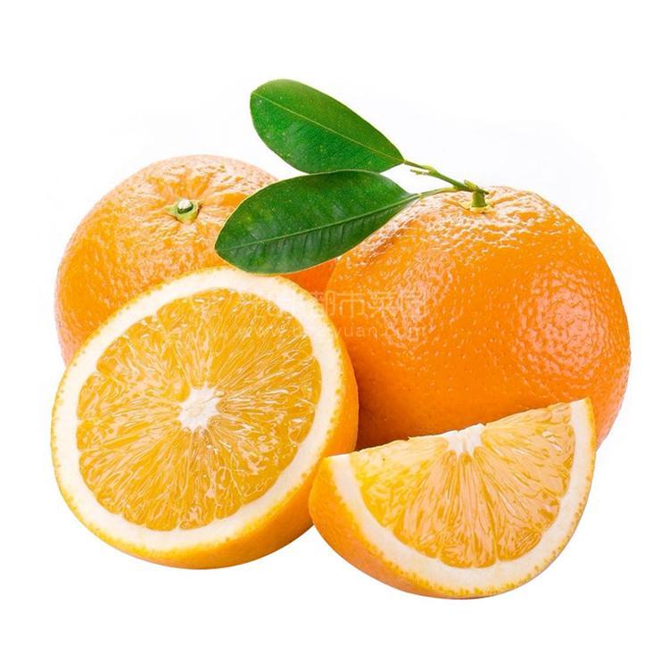 精品赣南脐橙10粒装