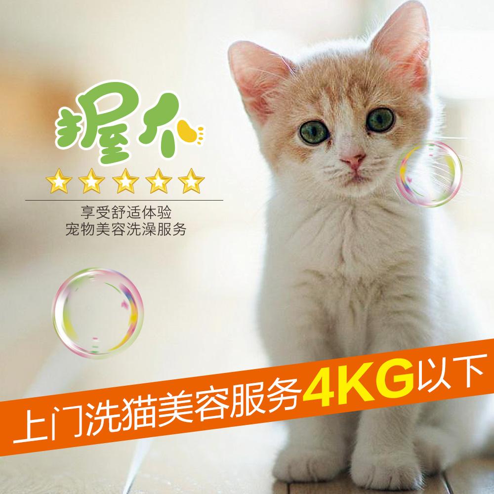 上门洗澡美容剪毛专业宠物上门洗猫美容服务美短 0-4KG