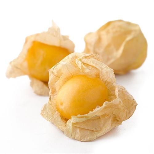 吉林长白山菇娘果1kg